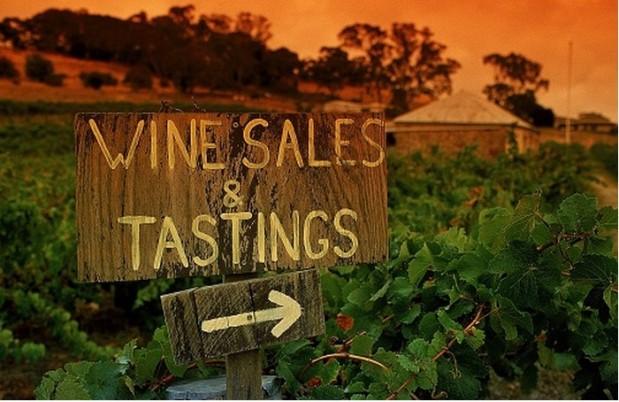 Wine-Toursim1
