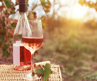 One glass and bottle of the rose wine in autumn vineyard
